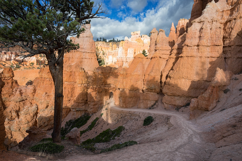 One of the tunnels in the Queens Garden Trail, Bryce Canyon National Park