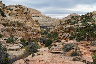 Hickman Bridge Trail, Capitol Reef National Park
