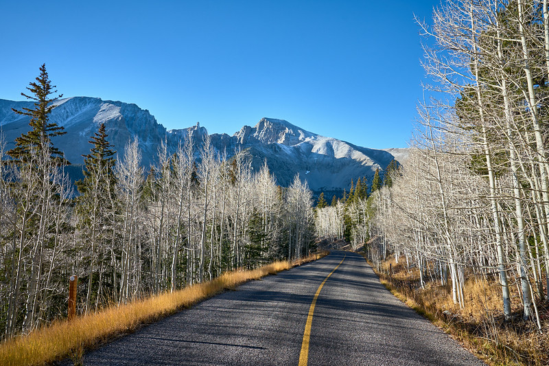 The road to the Wheeler Peak trailhead, Great Basin National Park.