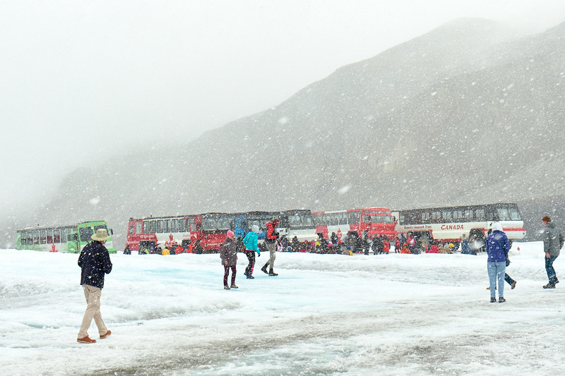 Crowds and ice crawlers on Athabasca Glacier, Jasper National Park