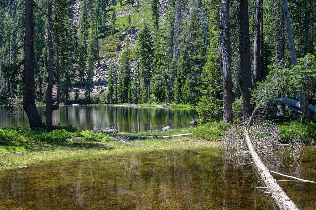 One of the many small lakes in Caribou Wilderness