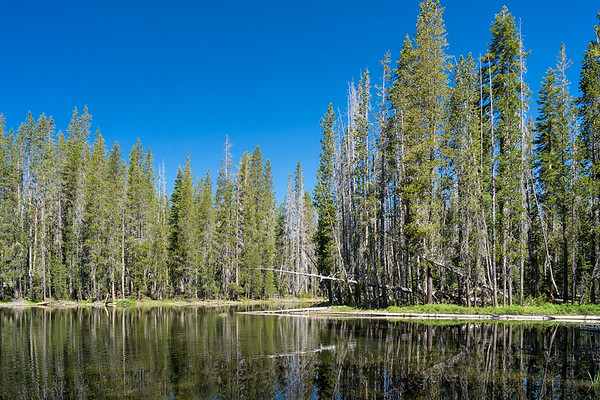The first of Hidden Lakes, Caribou Wilderness