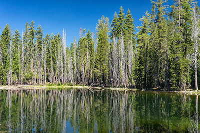 One of the Hidden Lakes in Caribou Wilderness