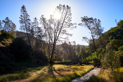 Early morning along the Old Pinnacles Trail and dry creekbed