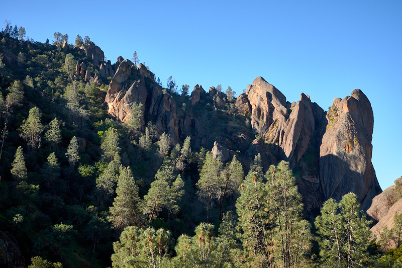 View from the Old Pinnacles Trail