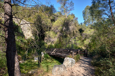 One of the few stream crossings on the Old Pinnacles Trail.