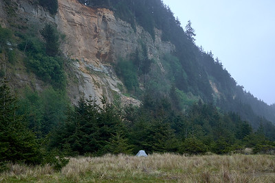 Camp at Gold Bluffs Beach.  The nearby waves echoed off of the cliffs all night