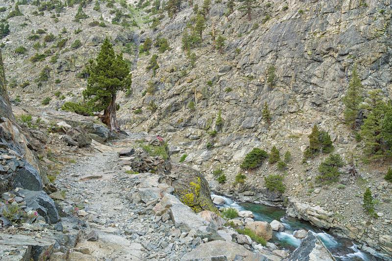 San Joaquin River Trail