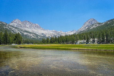 McClure Meadow