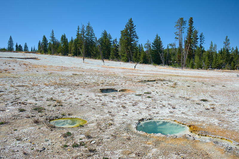 Small springs in West Thumb Geyser Basin