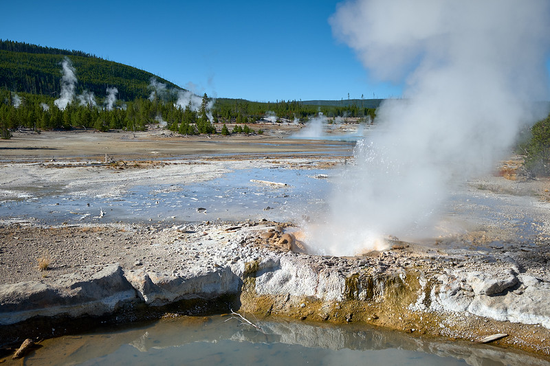 veteran geyser
