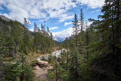 Trail to Takakkaw Falls, Yoho National Park