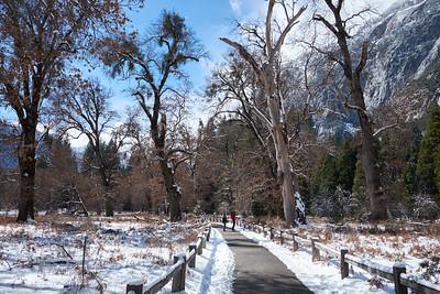 The hiking trail at Yosemite Falls, Yosemite National Park.