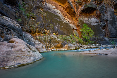 Pools in The Narrows, Zion National Park.