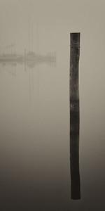 Washington Harbor, NC, barely visible through the fog