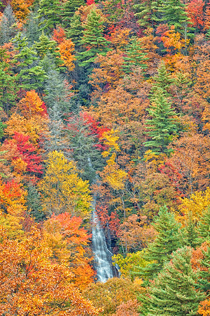Nantahala National Forest, North Carolina.