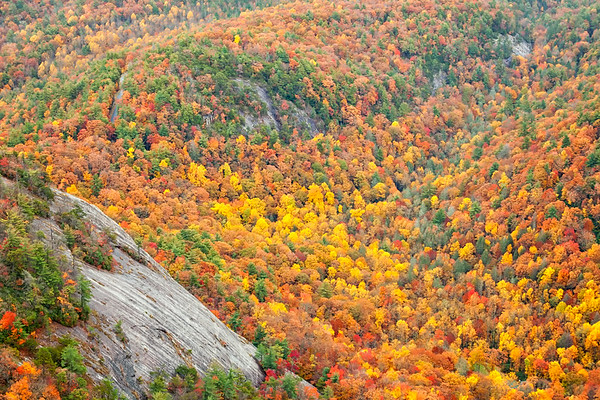 Fall on Whiteside Mountain, Nantahala National Forest, North Carolina.