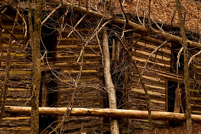 An old two-story cabin hidden in the woods of Eno River State Park, in land that was once completely cleared of timber for farming.  North Carolina.