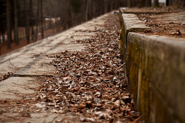 Occoneechee Speedway hiding in the forest outside of Hillsborough, North Carolina.  NASCAR's first track from 1949.  The old seats are now cracked and covered in leaves.