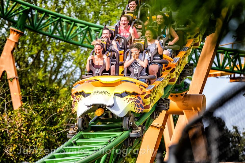 Cheetah Hunt - Busch Gardens Tampa