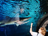 Jane imagines hugging a shark_DSC00992a
