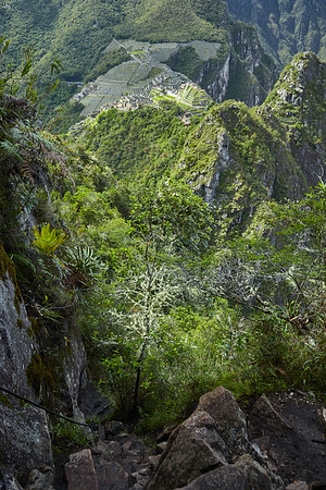 The trail on Huaynapicchu.