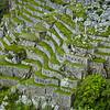 Intricate terracing at Machu Picchu.