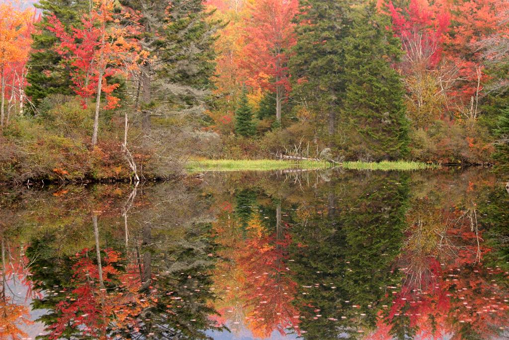 New Hampshire Pond