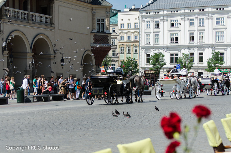 Title: Market Square in Krakow
