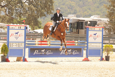 Eventing at Woodside Horse Park, August 2013.