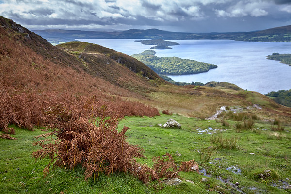 Fall begins to change the hillside colors from green to brown.  Scotland.