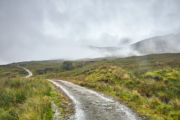 The Way continues through Glen Falloch in morning fog.  Scotland.