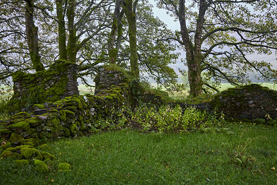 After descending towards the River Fillan, the ruins of Saint Fillan's Priory greet hikers.  Saint Fillan was a 7th-century missionary, and the priory was constructed in 1318 under Robert the Bruce.  The Bruce carried one of the saint's holy relics into the infamous Battle of Bannockburn in 1314.  Scotland.