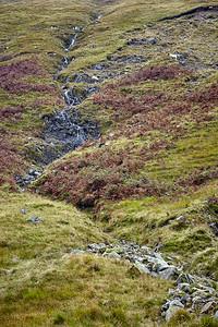 Black-faced sheep graze on the moorland sides of Beinn Odhar.  Scotland.