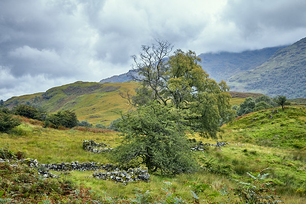Looking back at Glen Falloch and the remains of stone buildings