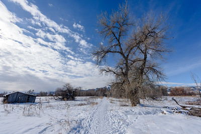 new years day walk, south boulder creek trail
