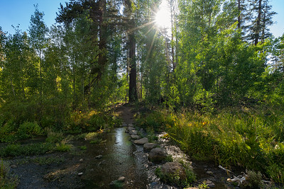 One of the stream crossings on the trail to Dardanelles Lake