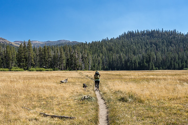Hiking through Big Meadow