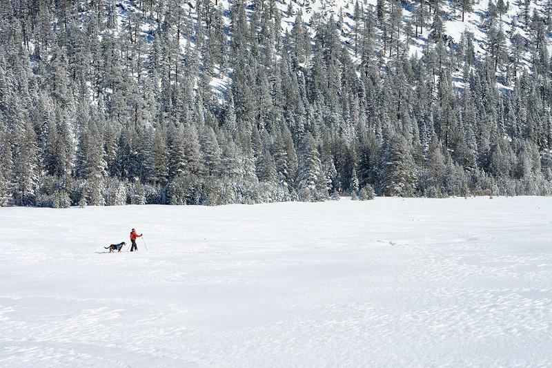 snowshoeing grass lake