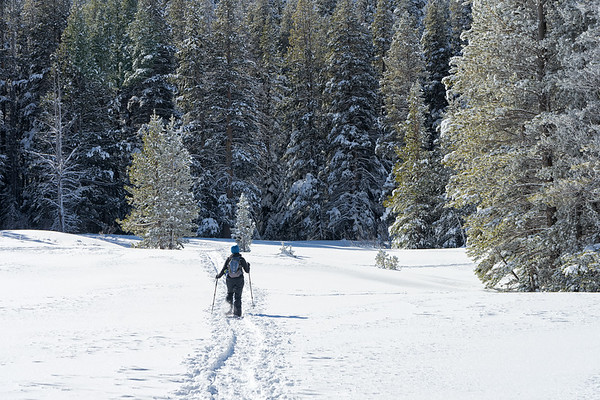 Snowshoeing south across Grass Lake