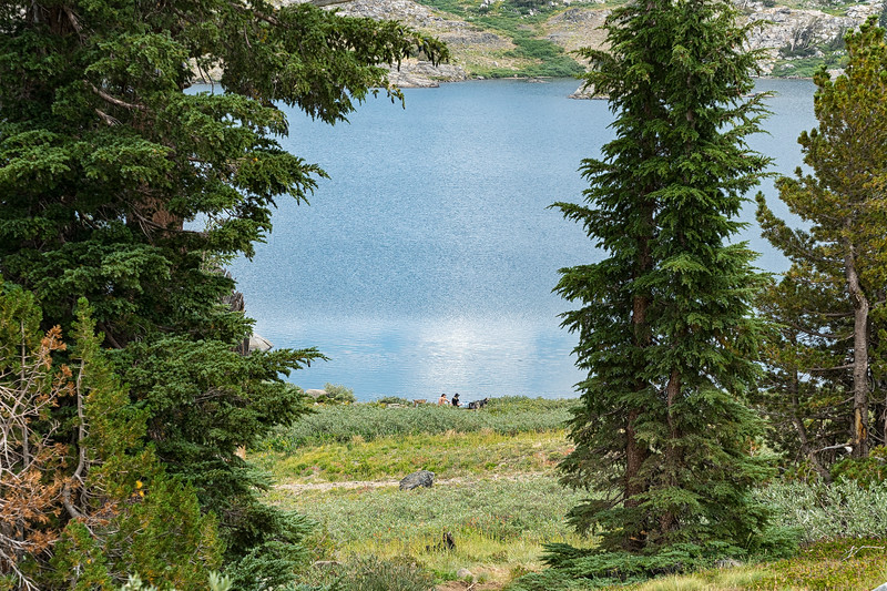 Hikers and their dogs enjoying a break at Winnemucca Lake
