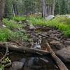Woods Lake Creek