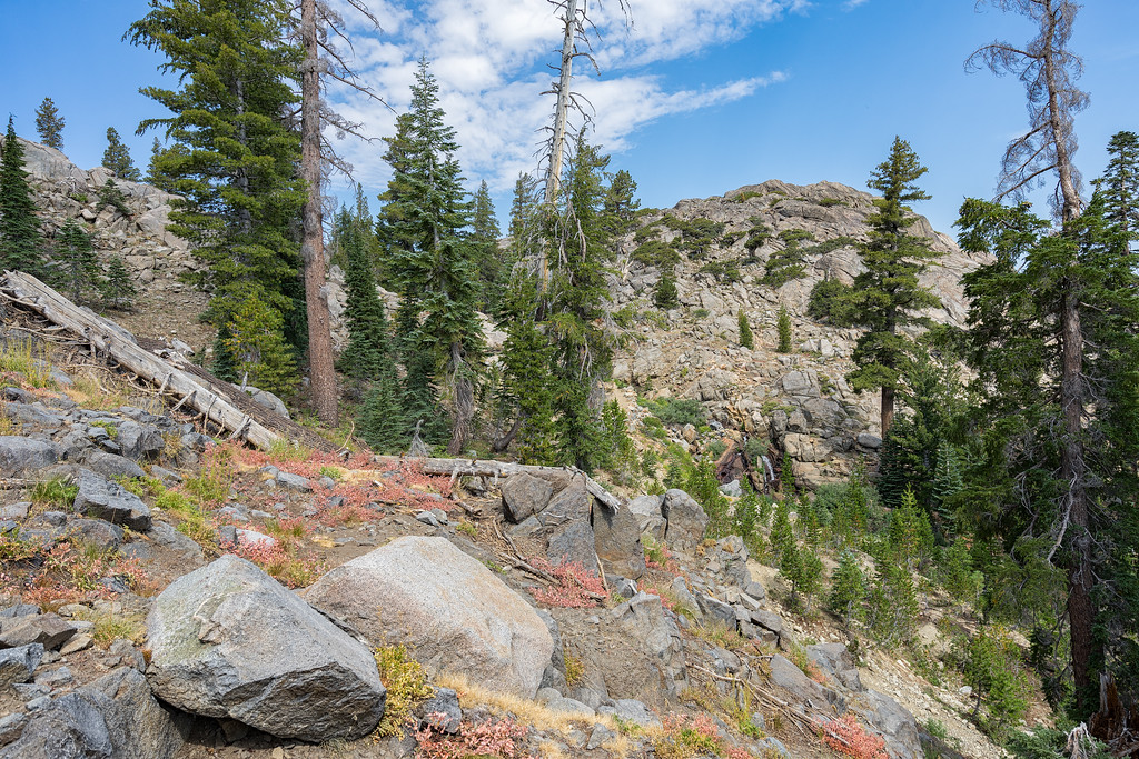 Looking towards the Lost Cabin Mine from the trail to Round Top Lake.  A small waterfall cascades to the mine site.