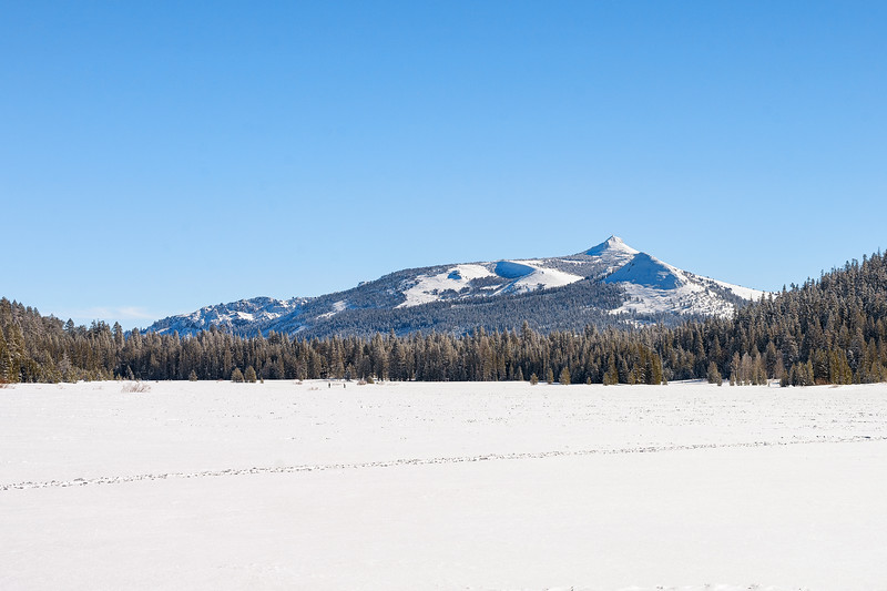 grass lake snowshoeing