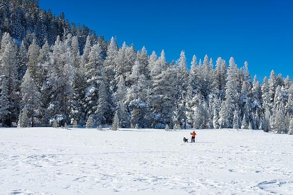 Skiing across Grass Lake