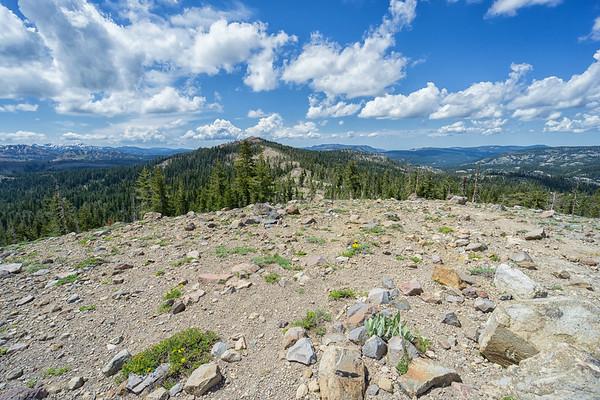 On the ridgeline to Castle Peak, looking west towards Castle Pass.