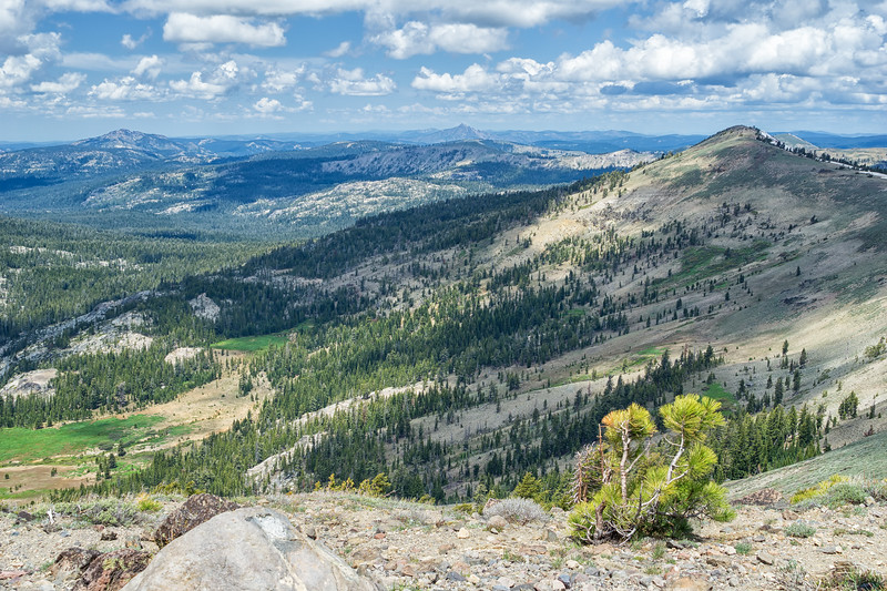 Looking north from Castle Peak.  The ridgeline from Castle Peak goes north to Basin Peak.  Sierra Buttes are visible left of Basin Peak, and Mt Lassen is further in the distance between Basin Peak and Sierra Buttes.  Round Valley is in the foreground.
