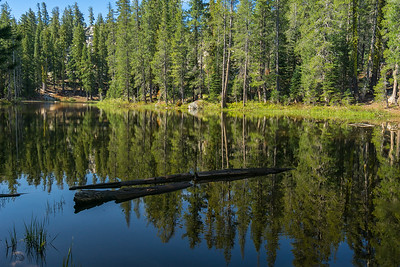 One of the small lakes at the start of the Castle Peak Trail (coincident with the Pacific Crest Trail).