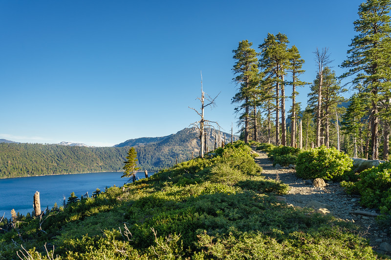 The first part of the Mt Tallac Trail follows a ridge overlooking Fallen Leaf Lake