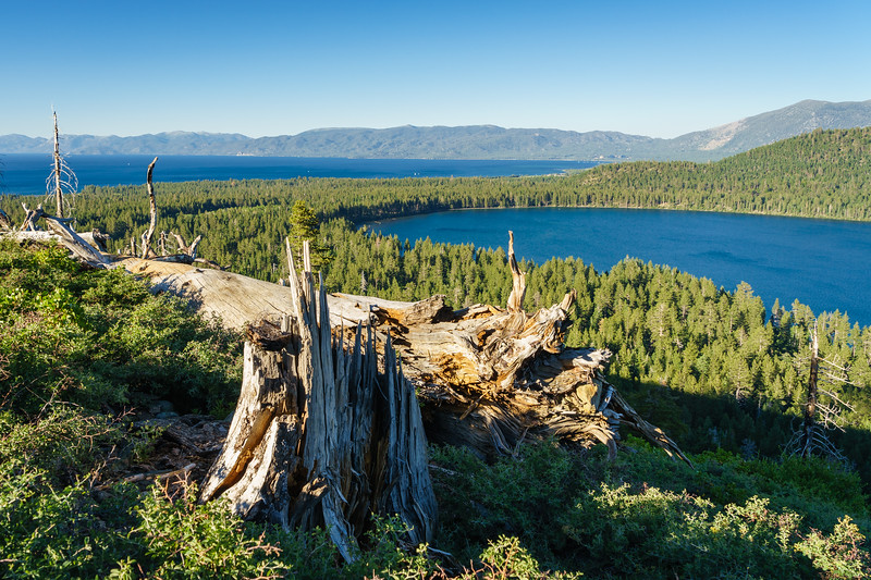 Fallen Leaf Lake and Lake Tahoe from the Mt Tallac Trail
